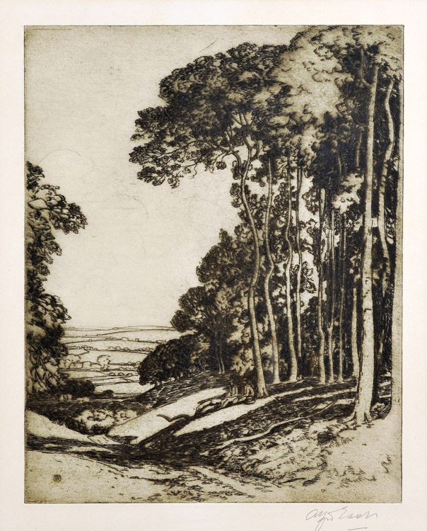 A Glade in the Cotswolds - Etching (KETKM: 41)